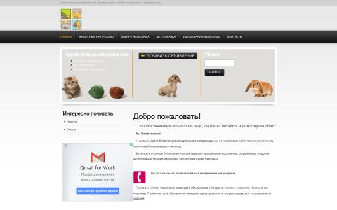 Ветеринарные услуги и консультации бесплатные объявления о животных